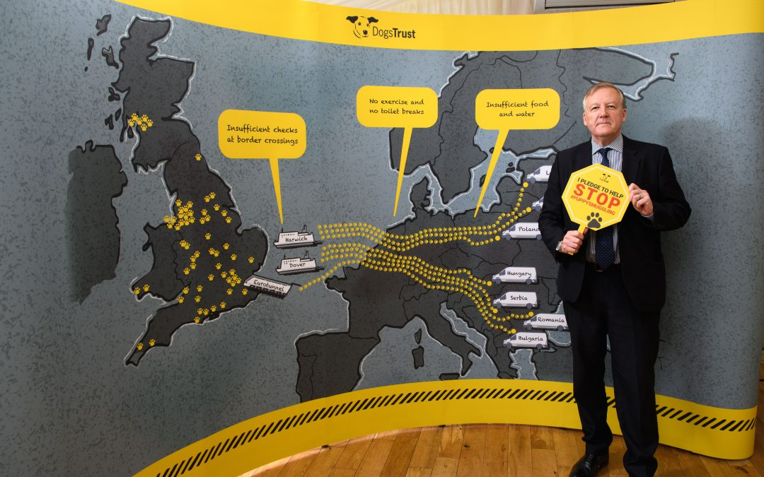 Kevan joins Dogs Trust in calling for an end to puppy smuggling